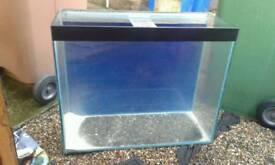 2.5ft x 2.5ft fish tank