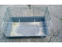 indoor gineau pig cage