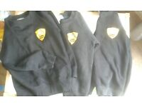 Audley primary jumpers