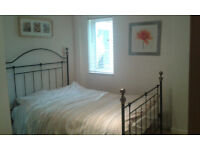 Professional required to rent spacious double bedroom near beach