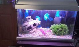 Fish tank (32 litres)