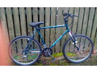Good Condition Raleigh Gents Bicycle for sale
