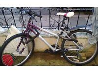 Brand new lady's bike