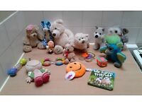Baby toy and teddy bundle