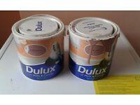 Dulux paint £5