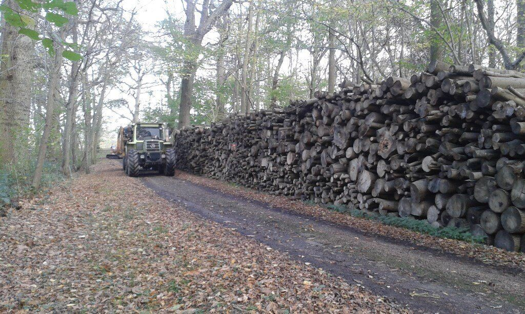 Firewood, seasoned Hardwood logs for sale,small Bags,Bulk 1 ton Bags,and loose loads delivered.