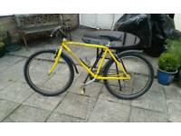 Specialized bikes 80 each