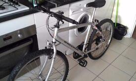 "Mountain Bike Raleigh 24""/26"""