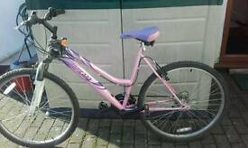 Pink Lady's Bicycle