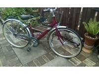 Raleigh Push bike ladies