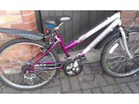 Ladies Bike suitable for teenager