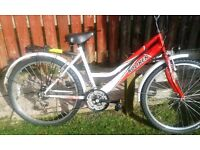 Excellent good condition lady bike bike for lady pick up in Stirling now