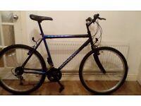 Adult Universal mountain bike