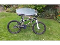 Eastern Lowrider BMX Bike, 20 Inch Wheels, Good Condition, Ready To Cycle Today