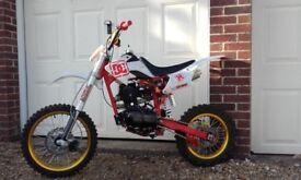 xplorer pitbike (150cc)