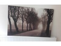 Large Ikea Canvas Picture ( 118 cms x 78 cms )