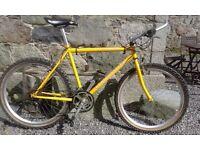 Mens Claud Butler Mountain Bike
