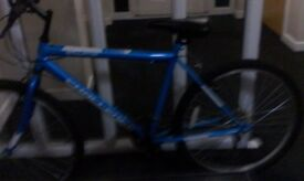 Challenger nearly new bike hardly used