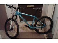 Focus black hills mountain bike