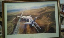 Robert Taylor air strike over west Falkland
