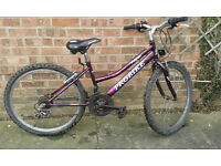 Girls Bike 5 speed