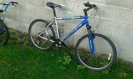 Mountain bicycle Trek alluminium frame