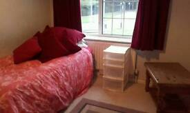 Room in family house to rent