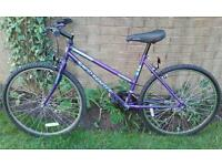 Womens Universal bicycle with 10 speed gears, 17 inch frame, colour purple, good condition, £20.