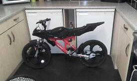 20' bike