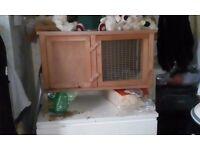 Ginea pig/dwarf rabbit hutch