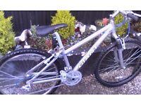 Girl's/ lady's giant bike