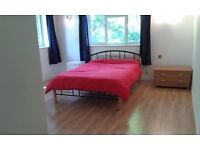 Exceptional en-suite bedroom in professional home. Fantastic location. Bills included
