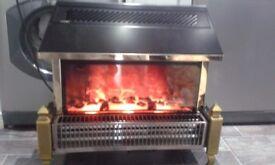 LARGE DIMPLEX FIRE ,