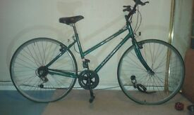 PIONEER CLASSIC RALEIGH