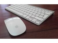 Magic Mouse Wireless keyboard for Mac
