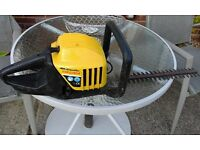 hedge cutters petrol
