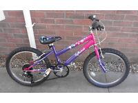 "Crane Reflections Girls 20"" Wheel Bike Bicycle"