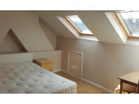Double Room in 2 Bedroom Flat close to Leytonstone Tube and Shops