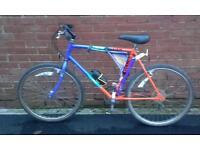 Raleigh mustang men's bike