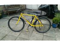 Specialize bike perfect condition 80 each