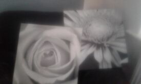 Canvas flower pictures x 2