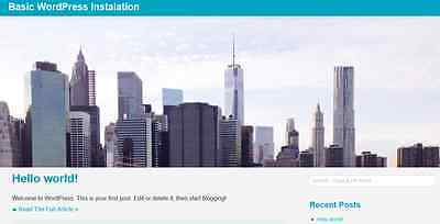 Install Wordpress Blog Website Hosted Or On Your Hosting  --on Sale--