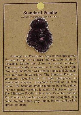 HAT PIN LAPEL PINS STANDARD POODLE DOG