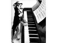 Friendly Piano Lessons in Brighton & Hove Area