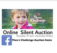 Theo's Challenge- Online Auction