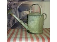 Watering cans for sale