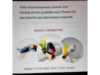 DOMESTIC CLEANER AVAILABLE NOW. FULLY INSURED