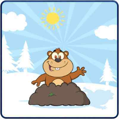 30 Custom Winter Magic Groundhog Personalized Address Labels