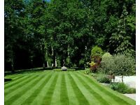 Swain Gardening - Gardeners covering London and Surrey