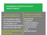 Expert Help-Essay,Assignment,Coursework,Dissertation,Programming,Mat lab,Nursing,Engineering, SPSS